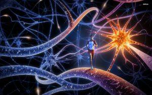 neurona-corredor